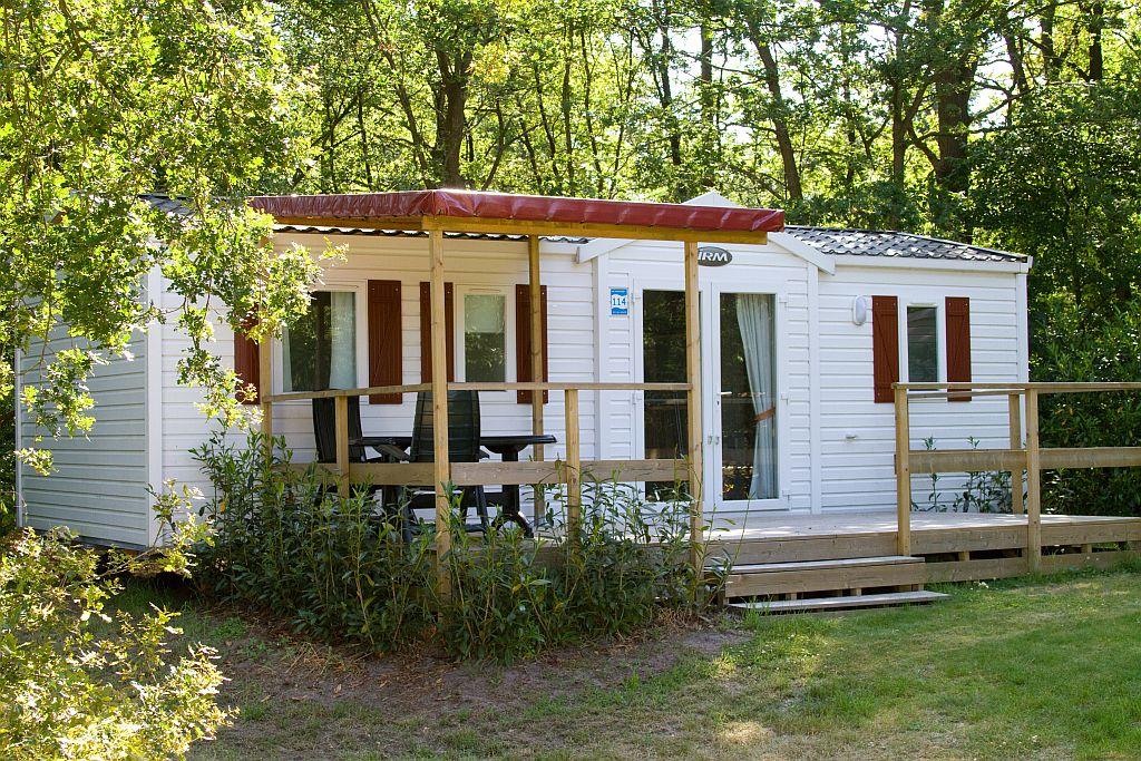 Chalet basic plus met ruimere woonkamer - Chalet basic plus in Overijssel